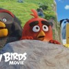 Trailer: Angry Birds movie